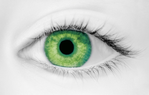Fashion Eye Accessory Tint Green (With Free Solution And Case)