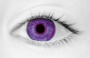 Fashion Eye Accessory Tint Violet (With Free Solution And Case)