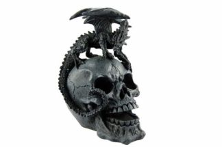 Dragon Standing On Skull Head