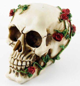 Skull With Rose H13xW10cm