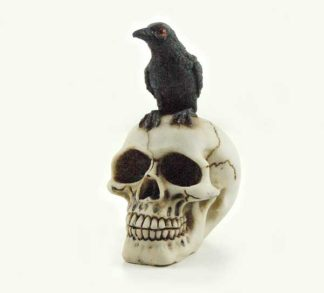 Skull Ivory With Corbie Bird