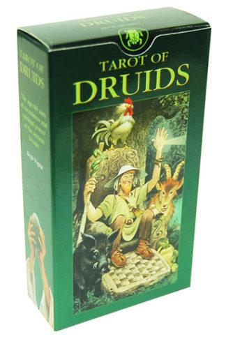 Tarot Card Druids